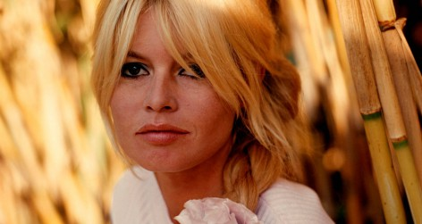 Brigitte Bardot's repeated convictions for inciting racial hatred