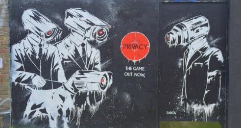 FSD Privacy
